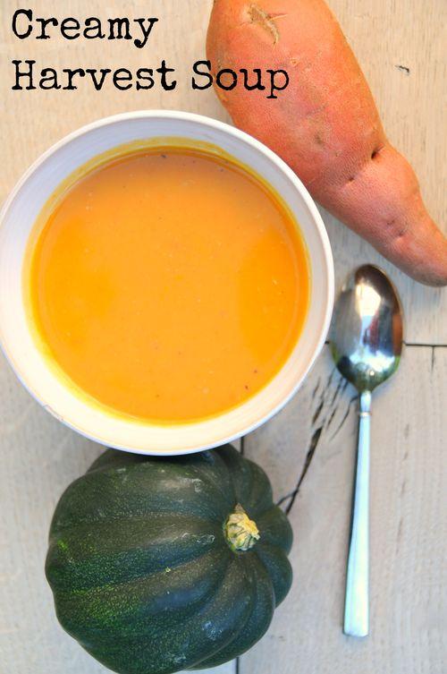 Creamy harvest soup