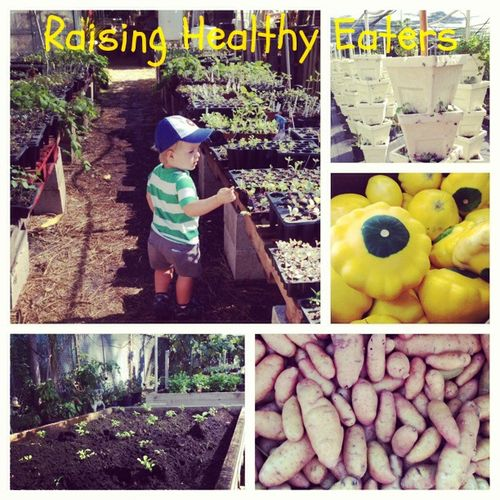 Raising health eaters